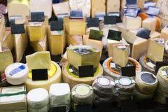 开胃菜欧洲人乳酪的分类 免版税库存照片