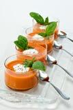 开胃菜汤蕃茄 库存照片