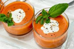 开胃菜汤蕃茄 库存图片