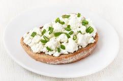 开胃菜用凝乳酪和葱 免版税库存图片
