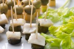 开胃菜用鲱鱼和黄瓜 免版税库存图片