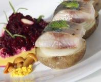 开胃菜用鲱鱼 库存图片