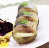 开胃菜用鲱鱼 图库摄影