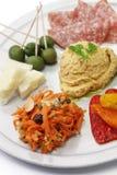 开胃菜的自创分类 图库摄影