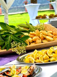 开胃菜自助餐-婚礼 免版税库存图片