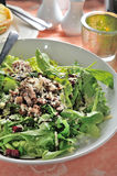 开胃菜蘑菇素食者沙拉 免版税库存图片