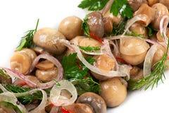 开胃菜蘑菇 图库摄影