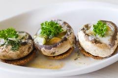开胃菜蘑菇 免版税库存图片