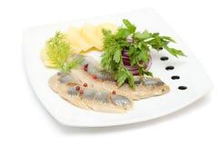 开胃菜鲱鱼 图库摄影