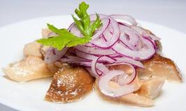 开胃菜,沙拉,第一和第二条路线,汤 库存图片