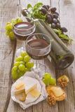 开胃菜-乳酪胡说的葡萄酒 免版税库存图片