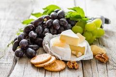 开胃菜-乳酪胡说的葡萄酒 免版税图库摄影