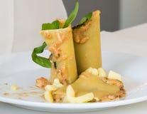 开胃菜-乳酪滚动用肉和菜 库存照片