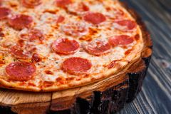 开胃薄饼用意大利辣味香肠和乳酪在木头,关闭服务 免版税库存照片