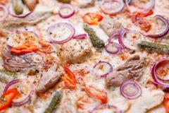 开胃薄饼纹理用肉、葱、嫩黄瓜和辣椒p 免版税库存图片