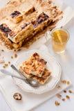 开胃酸奶干酪饼用葡萄干 库存照片