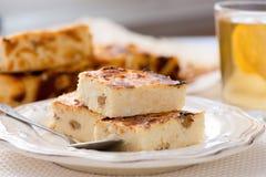 开胃酸奶干酪饼用葡萄干 免版税库存照片