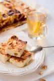 开胃酸奶干酪饼用葡萄干 免版税库存图片