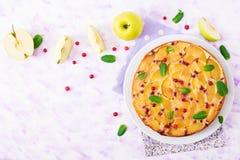 开胃饼用苹果和蔓越桔在轻的背景 图库摄影