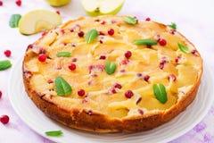 开胃饼用苹果和蔓越桔 免版税库存照片