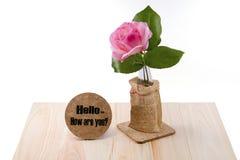 开花与启发词的美丽的一朵桃红色玫瑰被隔绝 免版税库存图片