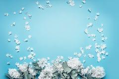 开花与在蓝色背景的瓣框架的淡色花 库存照片