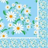 开花与春黄菊的无缝的样式在蓝色背景。 免版税库存照片