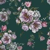 开花与水彩牡丹、白玫瑰和郁金香的无缝的样式 库存图片