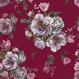 开花与水彩牡丹、白玫瑰和郁金香的无缝的样式 免版税图库摄影