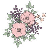 开花与狗玫瑰、莓果和叶子的花束在淡色 库存照片