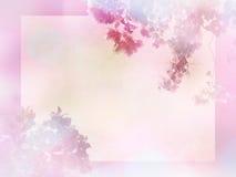 开花与水彩纸t拷贝空间的抽象背景  库存照片