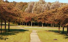 开花公园在秋天 库存照片