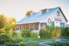 开花包围的遗产家从事园艺在日落 免版税库存照片