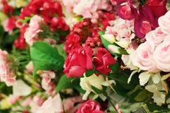开花另外玫瑰康乃馨花束 库存图片