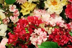 开花另外玫瑰百合牡丹康乃馨花束 免版税图库摄影