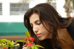 开花嗅到的妇女 库存图片