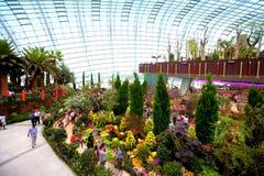 开花圆顶,在滨海湾公园内的两所音乐学院之一,新加坡 免版税图库摄影