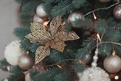 开花圣诞树装饰,金光滑的装饰品集合,垂悬在与球和诗歌选的冷杉 库存图片