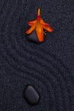 开花在一块黑石头在禅宗庭院里 免版税库存照片