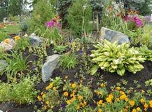 开花在与岩石的花床,高山幻灯片上开花 库存照片