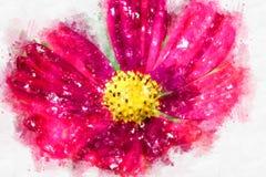 开花在五颜六色的水彩绘画背景的抽象花 库存照片