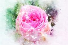 开花在五颜六色的水彩绘画背景的抽象花 免版税图库摄影