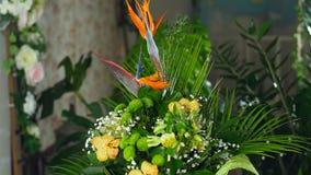 开花在光的花束,自转,花卉构成包括鹤望兰,菊花 影视素材