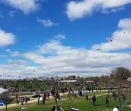 开花在全国购物中心的风筝节日在华盛顿特区, 库存图片