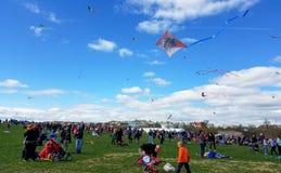 开花在全国购物中心的风筝节日在华盛顿特区, 库存照片