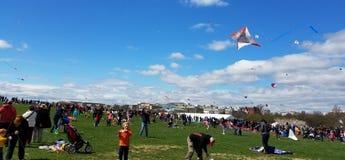 开花在全国购物中心的风筝节日在华盛顿特区, 图库摄影