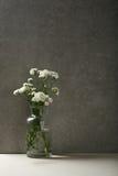 开花在具体内部的静物画 库存照片