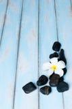 开花在小组在木地板上的黑石头 库存图片