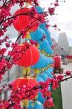 开花在新加坡 库存图片