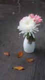 开花在木背景的金属罐,葡萄酒样式 免版税库存照片
